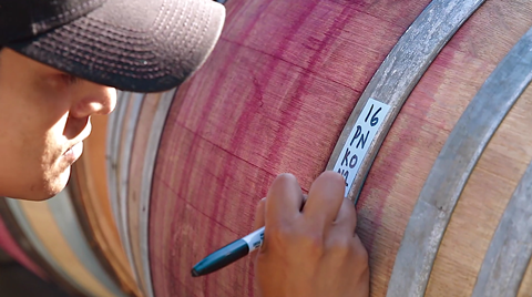 The Ojai Vineyard ~ One harvest day in 2016 (Video)